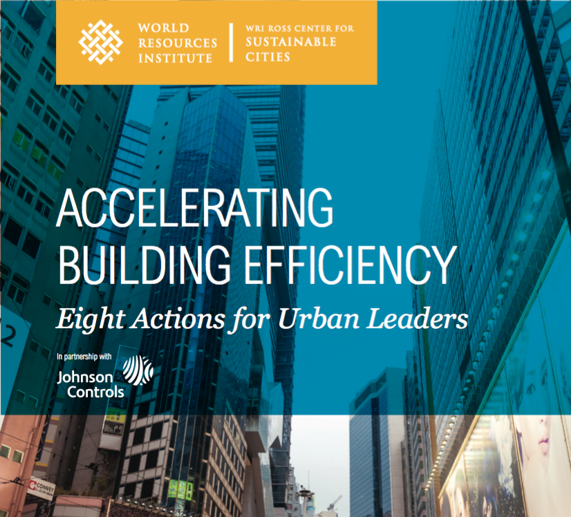 WRI Accelerating Building Efficiency brochure